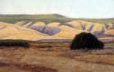 Currier Canyon, pastel on prepared paper, 7.5 x 11.75 inches [$350]