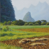 Ricefields near Jiu'xian, pastel on prepared paper, 12 x 12 inches [$350]