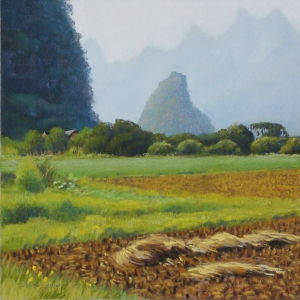 Ricefields near Jiu'xian, 2014, pastel, 12 x 12 in. [$350]