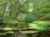 Turtle Pond, pastel on prepared paper, 11 x 15.25 inches [sold]