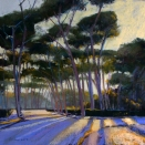 Borghese Pines., pastel on prepared paper, 14 x 14 inches [sold]