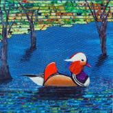 Chinese Mandarin Duck, mixed media collage, 13 x 12.5 inches [sold]